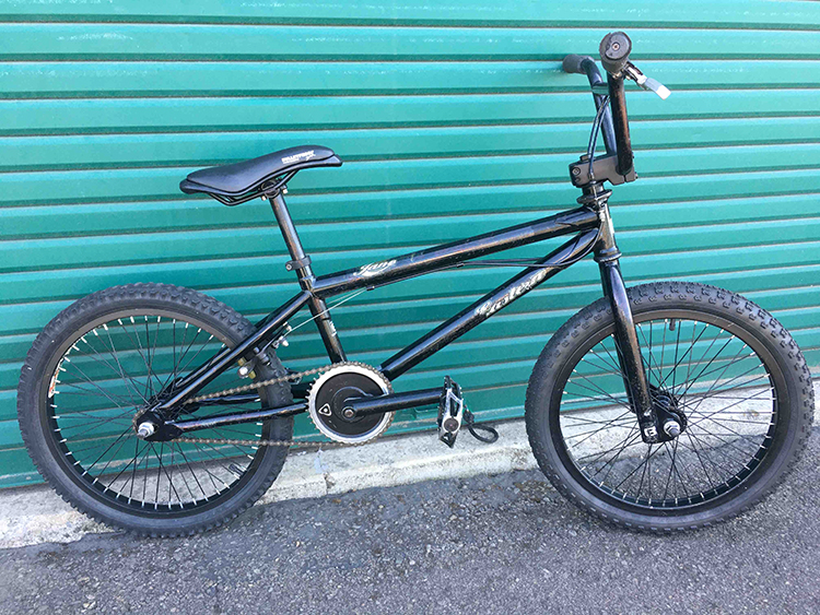 Eastern Jane BMX bike
