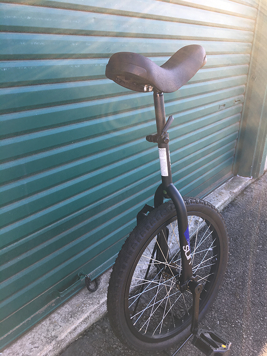 Sun Classic Unicycle
